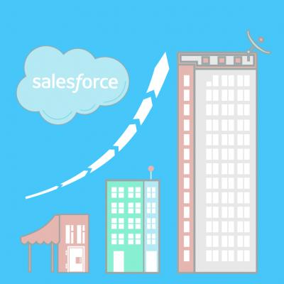 Salesforce Planning for Business